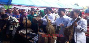 Menteri Pertanian Amran Sulaiman di Buton Utara TInjau Pertanian Organik