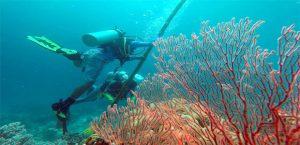 Persiapan Upacara Bawah Laut di wakatobi